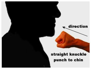 punch1a