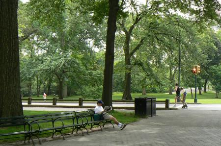 man-reading-paper-in-the-park